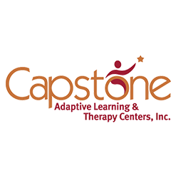 Capstone Security System